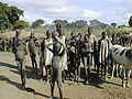 Rumbek Sudan cattle camp2.jpg