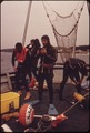 SCIENTIST PREPARE TO DIVE FROM THE VILA VELEBITA II, RESEARCH SHIP OF THE RUDER BOSKOVIC INSTITUTE - NARA - 549369.tif