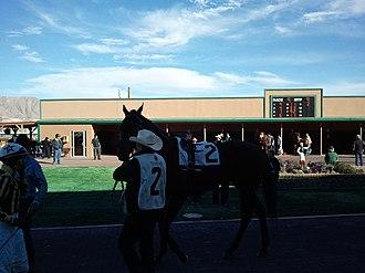 Sunland Park Racetrack & Casino - Image: SP Racetrack 1