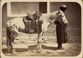 Saddle Gear of Central Asians. Karakyrgyz Saddle Gear WDL10874.png