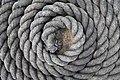 Saga Oseberg Details Rope coil curl spiral on deck Taukveil på skipsdekk Close-up Viking ship replica 2012 Tønsberg harbour havn Norway 2019-08-16 04322.jpg