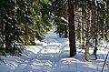 Salpa-line Finland - panoramio (8).jpg