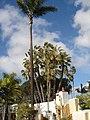 San Diego - Old Town, CA, USA - panoramio (38).jpg