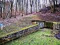 Sandweiler, réserve naturelle Birelergronn (105).jpg