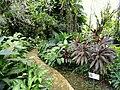 Sankyo Garden - DSC01266.JPG