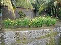 SantaTeresita,Batangasjf1767 27.JPG