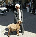 Sarakhsi Oldman and Sheep.jpg