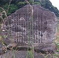 Saruhami002.jpg