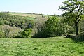 Satterleigh and Warkleigh, above the Mole valley - geograph.org.uk - 420240.jpg