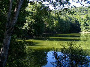 Mahwah, New Jersey - Scarlet Oak Pond, Ramapo Valley County Reservation