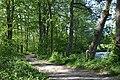 Schleswig-Holstein, Nordhastedt, Landschaftsschutzgebiet Mühlenteich NIK 2456.jpg