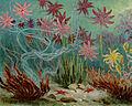 Seelilien.jpg