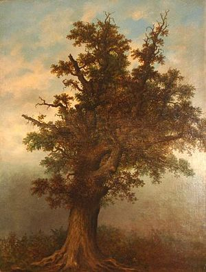 Selly Oak - Oil painting of 'The Old Selly-Oak Tree' by W. Stone (1897)