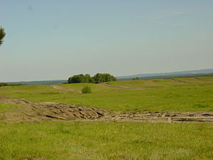 Sennelager Training Area - Typical training area landscape: tank tracks can be clearly seen