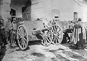 Battle of Kolubara - Austro-Hungarian soldiers stand beside captured Serbian artillery.