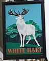 Sign for the White Hart, Castle Cary - geograph.org.uk - 667571.jpg