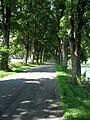 Silnice mezi Kamenicí a Herálcem.jpg