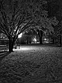 Sinigo under the snow in South Tyrol Italy Photo by Giovanni Ussi Bnw by night (21).jpg