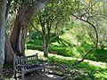 Sit Awhile, Batanical Gardens, Riverside, CA 2015 (29323476912).jpg