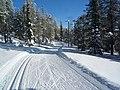 Ski Track (5529724771).jpg