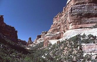 Cedar Mesa - Slickhorn Canyon, Utah