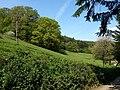 Slopes of Tamar valley, Underhill - geograph.org.uk - 793738.jpg