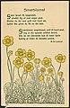 Smørblomst tegnet av Thorolf Holmboe, dikt av Magnus B. Landstad (36705584140).jpg