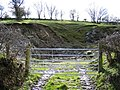 Small Quarry near Bryneglwys - geograph.org.uk - 363999.jpg
