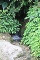 Small waterfall hidden behind the shrubs.jpg