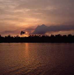 Smoke from oil flare, Nembe Creek.jpg