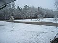 Snow Marengo County Alabama.jpg