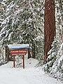 Snow at Cascade-Siskiyou National Monument (31312613520).jpg