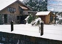 Snow in São Joaquim (SC) 1988b.jpg
