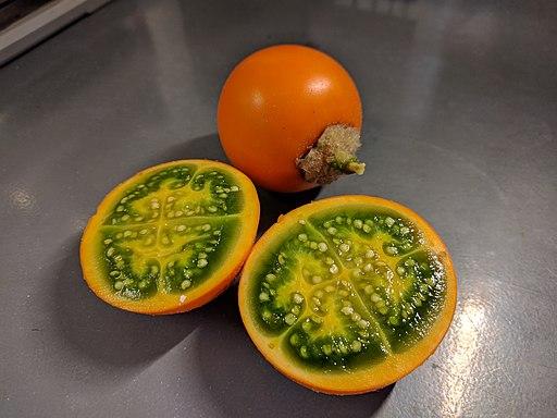 SolanumQuitoenseFruit1