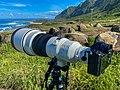 Sony 400mm f2.8 Lens.jpg