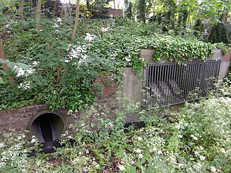 Shirebourne brook - Image: South bank of the Shirebourne at Victoria Recreation Ground