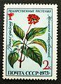 Soviet stamp 1973 Lekarstvennye rastenija Panax ginseng 2k.JPG