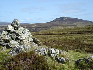 Spot height - Spot height 479 near Arenig Fach in Snowdonia, Wales, marked by a cairn