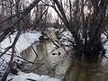 Spring Flood - panoramio.jpg
