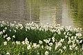 Spring in London (6970524300).jpg