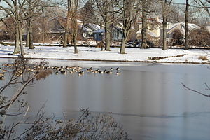 Springfield Gardens, Queens - A part of Springfield Lake in Springfield Park