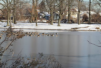 Springfield Park (Queens) in Winter.JPG
