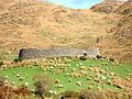 Staigue Ring Fort.jpg