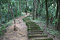 Stair of Heaven in Botanical Garden & Eco-Park, Sitakunda, Chittagong, Bangladesh.jpg