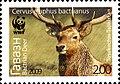 Stamps of Tajikistan, 013-09.jpg