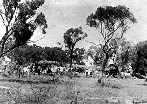 Shearers' Strike Camp Site, Barcaldine - Shearers' camp, 1891