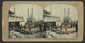 Steamer loading cotton aboard the Hard Cash in Mobile, Alabama, from Robert N. Dennis collection of stereoscopic views.png