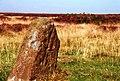 Steeple Cross - geograph.org.uk - 582716.jpg