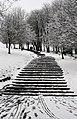 Steps (2354286795).jpg