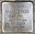 Stolperstein Martin-Luther-Str 17 (Schöb) Manfred Reiss.jpg